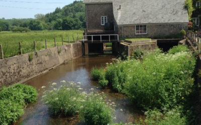 £20K award to develop Staverton hydro scheme