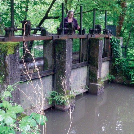 Staverton Leat project gets big thumbs up