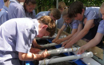 'REEL' programme – St Christopher's Pilot Project