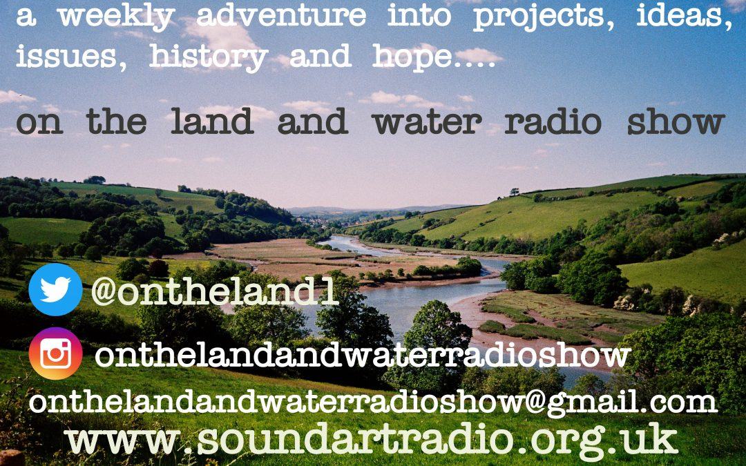MD Ian Bright on Soundart Radio